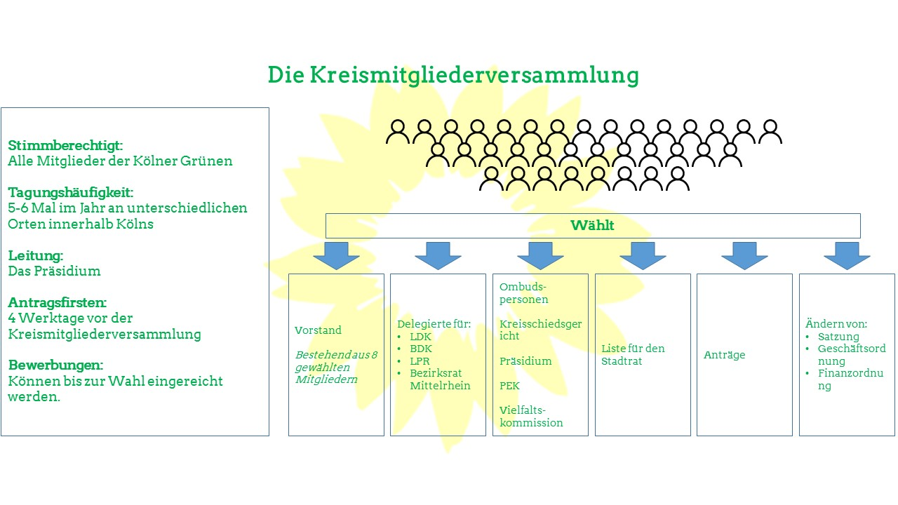 Organigramm Stadt Köln